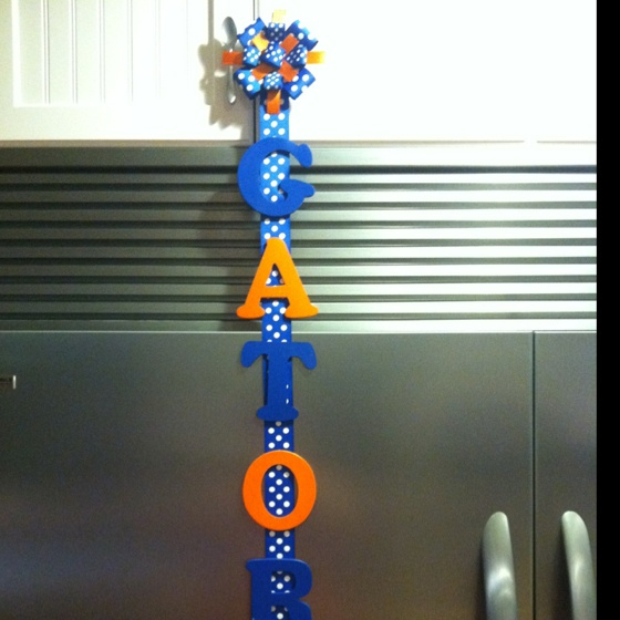 17 best images about it 39 s great to be a florida gator on pinterest football season texas - Florida gators bathroom decor ...