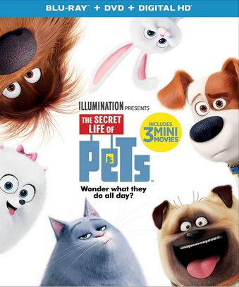 About The Secret Life of Pets Movie The movie stars Louis C.K., Eric Stonestreet (Modern Family), and Kevin Hart who are making their animated feature-film debut that finally answers the question: what do your pets do when you're not home? Haven't you wondered? I know I have. When their owners leave for the day, pets …