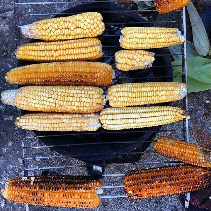 > #Jaraguenses somos locos con el maíz asado
