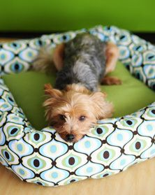 Your pup is a special part of your family. So, it is your responsibility as a pet owner to give them a place they can feel safe and warm to sleep. This 2 Hour DIY Dog Bed is going to keep your canine cuddly and happy for months to come after you create.