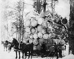 logging with horses - Google Search