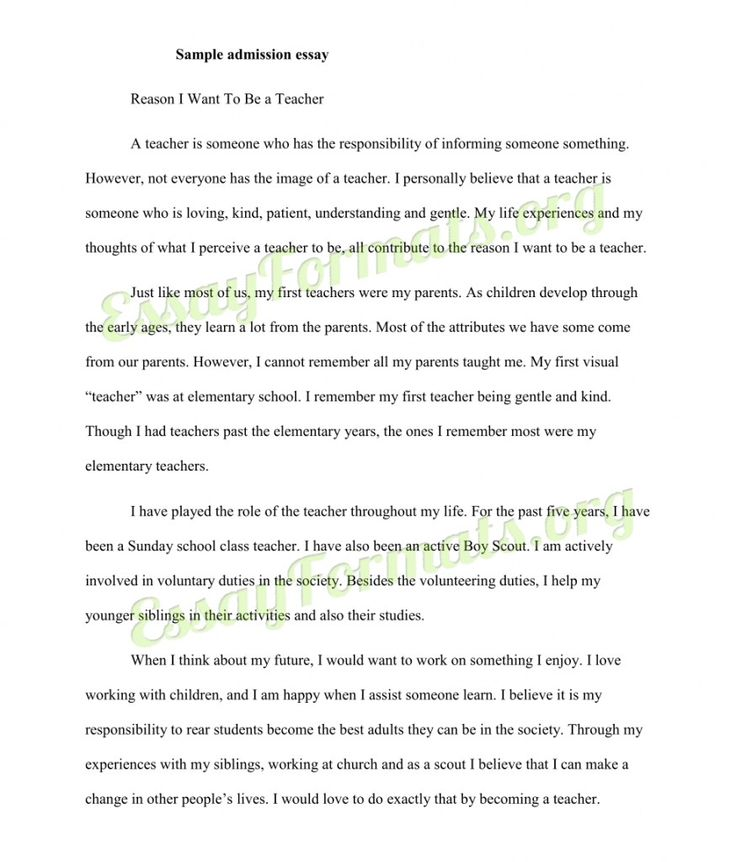 The  Best College Admission Essay Examples Ideas On