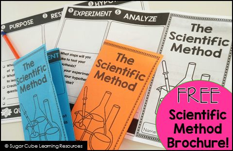 FREE Scientific Method brochure + my favorite books to help teach about the scientific method.