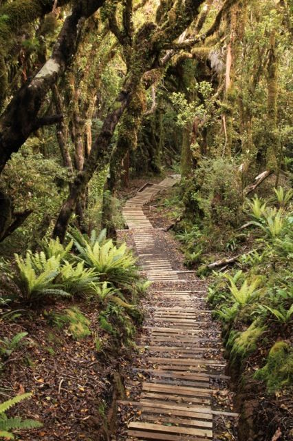 The Pouakai Crossing is a self-guided full-day hike on the slopes of Mount Taranaki in the Egmont National Park, North Island, New Zealand.