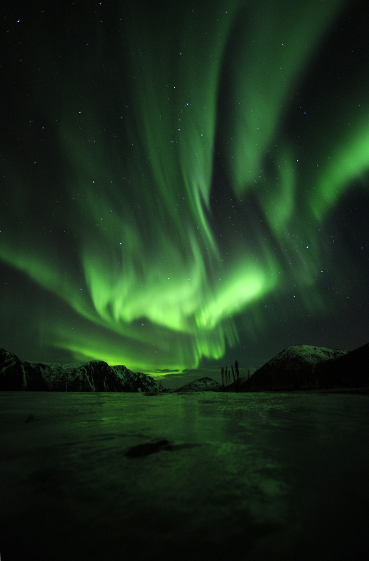 Great new aurora shot made by nature photographer Marten Bril, our photo tour leader at Vesterålen - Norway. (http://fotoreizen.net/fotoreizen/international-tours). Feel free to repin if you like. #aurora, #nature, #photography. www.nordicvision.nl ;©Marten Bril