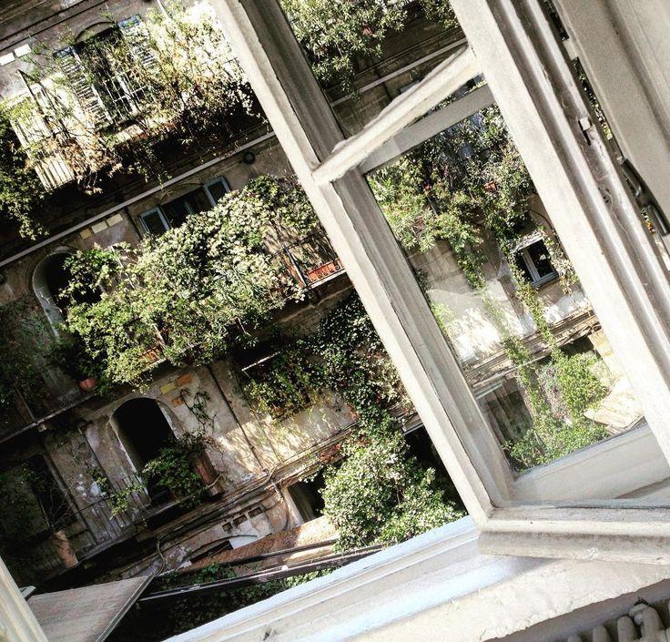 """""""La finestra sul cortile"""".... @10corsocomo #milano #milanesi #10corsocomo #mi #milan #cortili #cortilimilanesi #milanocity #city #milanodavedere #italy #finestra #window #green #bello by roberta.baria"""
