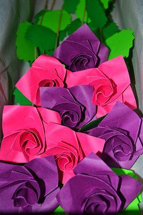 Rosas Tsuru