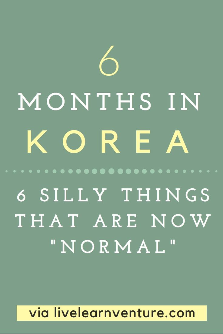 6 Months in Korea: 6 Silly Things That Are Now Normal