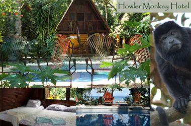 Howler Monkey Hotel