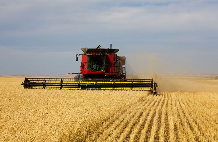 combine harvesters | Combine harvesters have evolved to fit the needs of farmers.