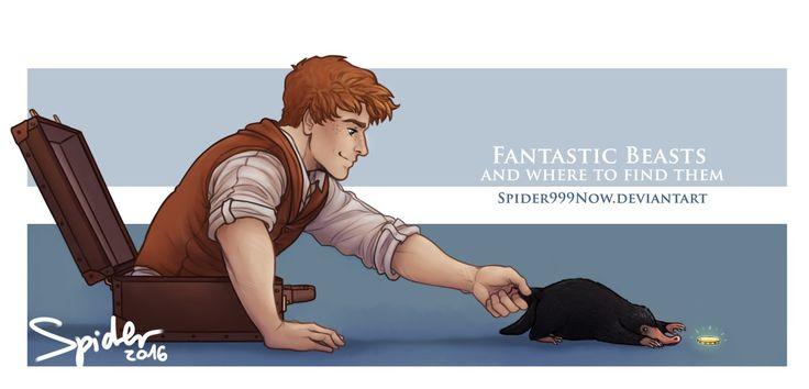 Awesome Art Harry Potter Fantastic Beasts