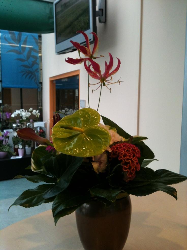 Anthurium & Gloriosa at the front desk of the Dutch auction @FloraHolland . .. Welcome!