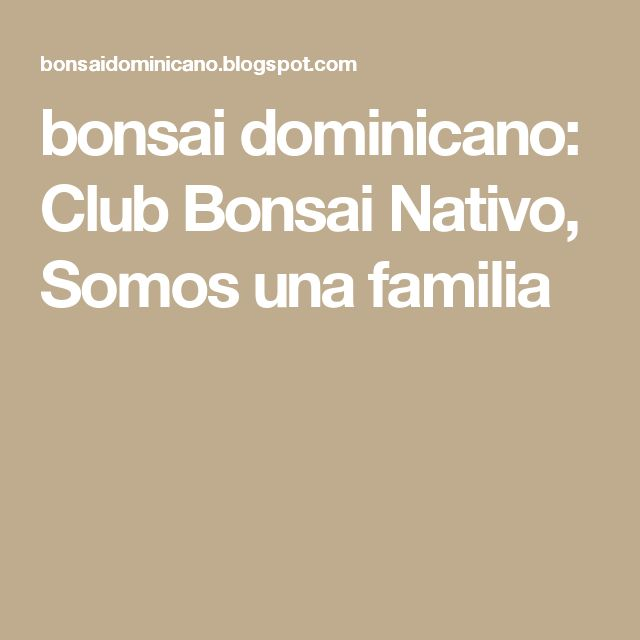 bonsai dominicano: Club Bonsai Nativo, Somos una familia