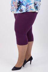 леггинсы / Белье / Пышная Красавица - интернет-магазинчик женской одежды больших размеров - BBWSHOP.RU