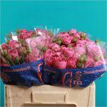 Rose spray Misty Bubbles! #Roses #Spray #Wholesale #Wedding #Flowers