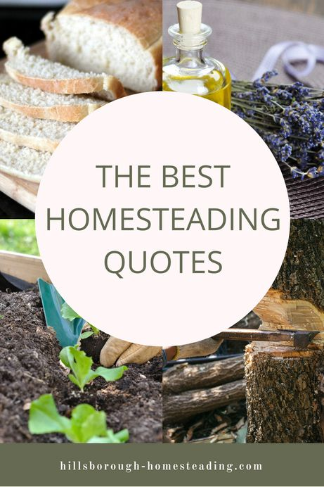 A collection of the top quotes to inspire your homestead - quotes on gardening, self-sufficiency, living simply, living off the land, etc. Comment and add your own! | Hillsborough Homesteading