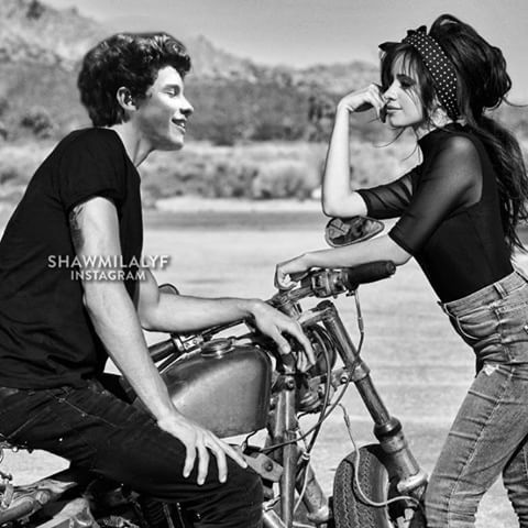 Image result for shawmila manip