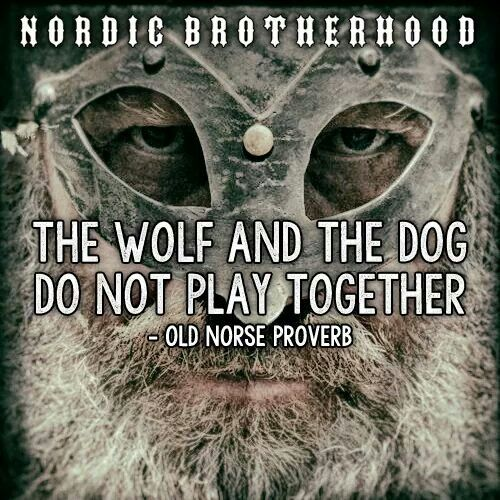 Nordic Brotherhood...fb