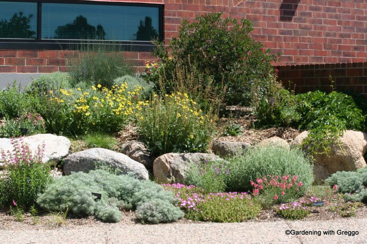 More xeriscape inspiration for front yard for the home for Xeriscape garden designs