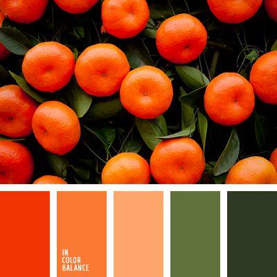 anaranjado vivo, color anaranjado, color mandarina, color naranja, melocotón, rojo, selección de colores, tonos mandarina, tonos verdes, verde, verde oliva, verde oscuro.