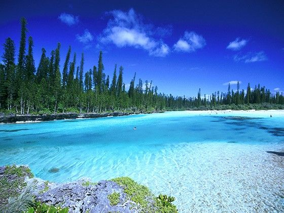 天国に一番近い珊瑚礁!神秘の島「ニューカレドニア」                                                                                                                                                                                 もっと見る