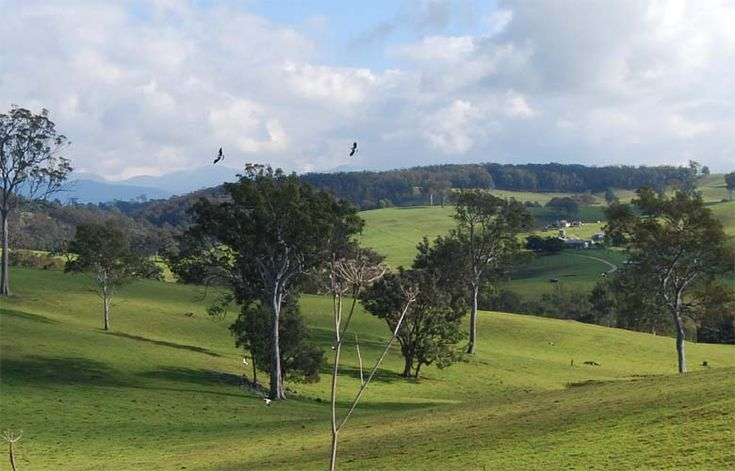 Bega Valley NSW
