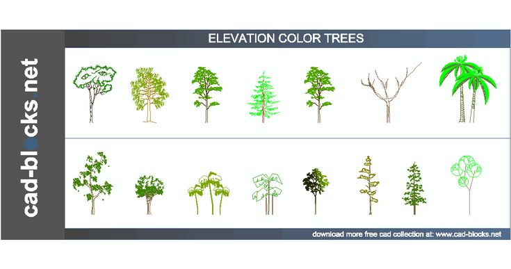Technical Graphics Elevation Plan End View : Color trees cad blocks in elevation view vegetation