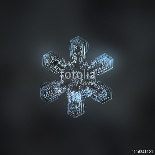 """Download the royalty-free photo """"Snowflake on dark grey backdrop: macro photo of real snow crystal on woolen fabric in natural light. Background digitally blurred. This is large stellar dendrite snowflake with complex inner pattern."""" created by Alexey Kljatov at the lowest price on Fotolia.com. Browse our cheap image bank online to find the perfect stock photo for your marketing projects!"""