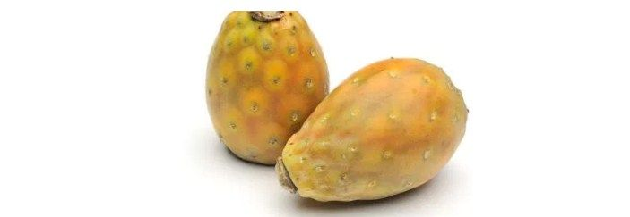 Cactus Figs, more commonly referred to as the Prickly Pear, are brilliant for skin care. In fact, you may find that many natural skincare products on the market contain Cactus Figs. On this page, we are going to take a look at what they are, and how they may benefit your skin.