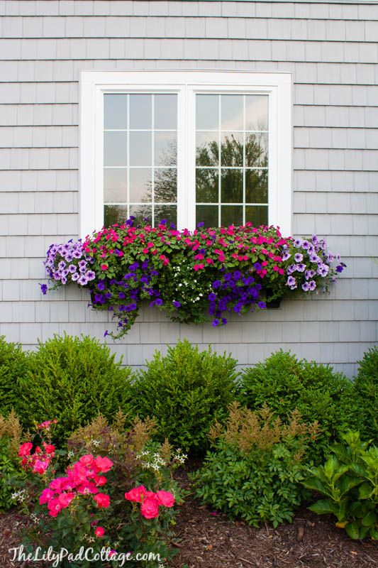 """Think of a window box as a """"permanent"""" floral arrangement. Though the blogger at The Lily Pad Cottage added one to each window of the front of her house to stunning effect, a backyard window box creates a stunning focal point that adds ambiance to your patio entertaining space. Get more ideas at The Lily Pad Cottage »   - HouseBeautiful.com"""