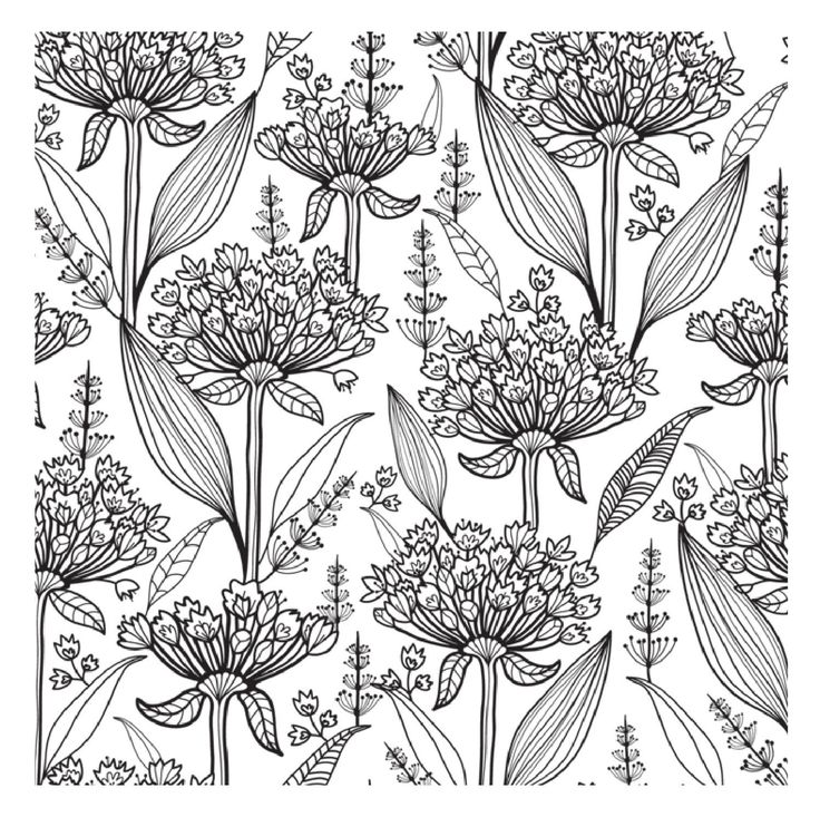 Glorious Gardens Creative Colouring For Grown Ups