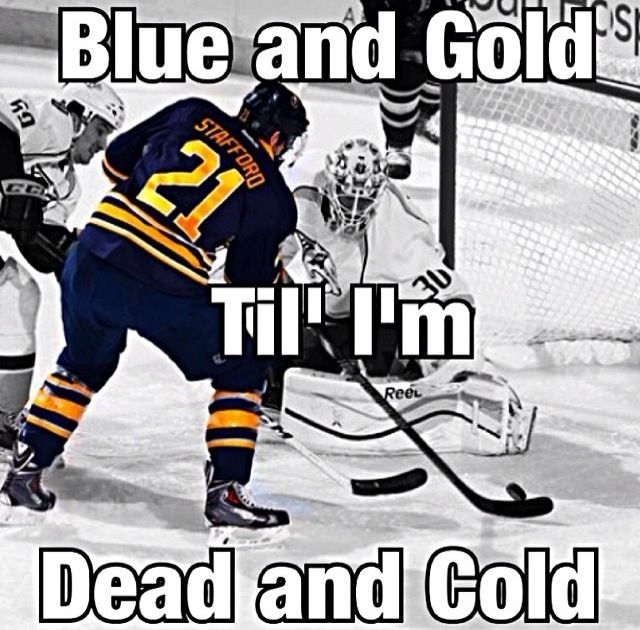 17 Best Images About Buffalo Sabres Hockey On Pinterest