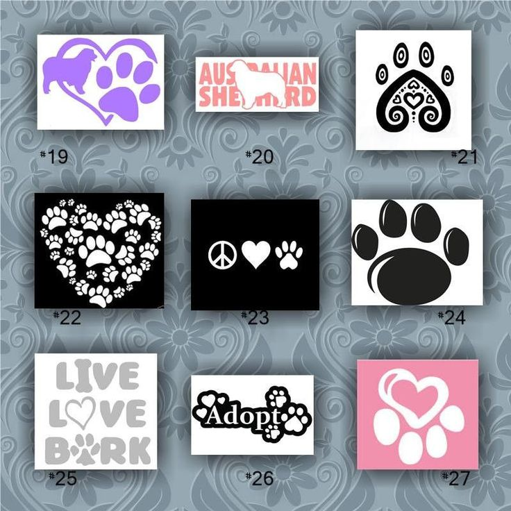 Best  Vinyl Stickers For Cars Ideas On Pinterest Vinyl Car - Window stickers for cars