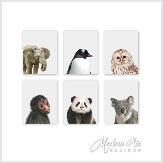 Zoo Animal Nursery Baby Art Prints Animal by ModernMixDesigns