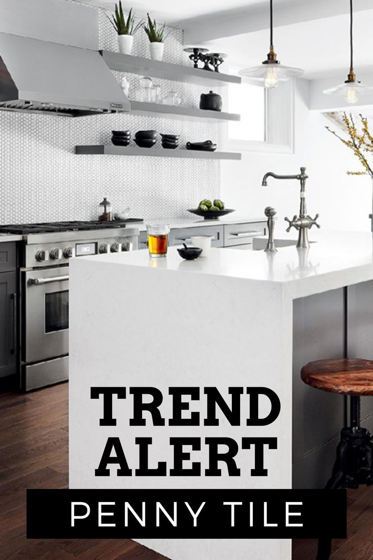 TREND ALERT: PENNY TILE  White penny tiles with black grout working beautifully with grey cabinetry, silver hardware and matte black accessories in this modern but timeless kitchen.