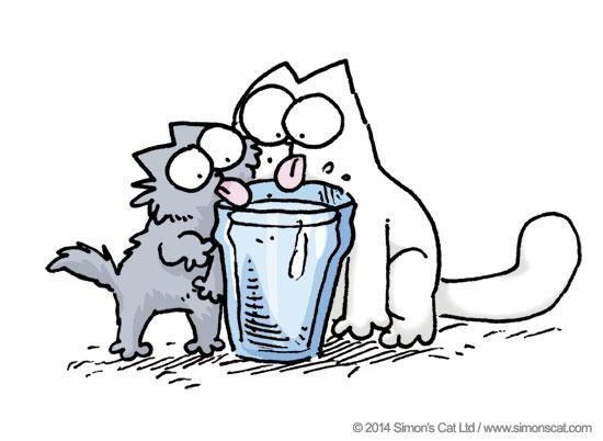 Simons Cat Gif Faim