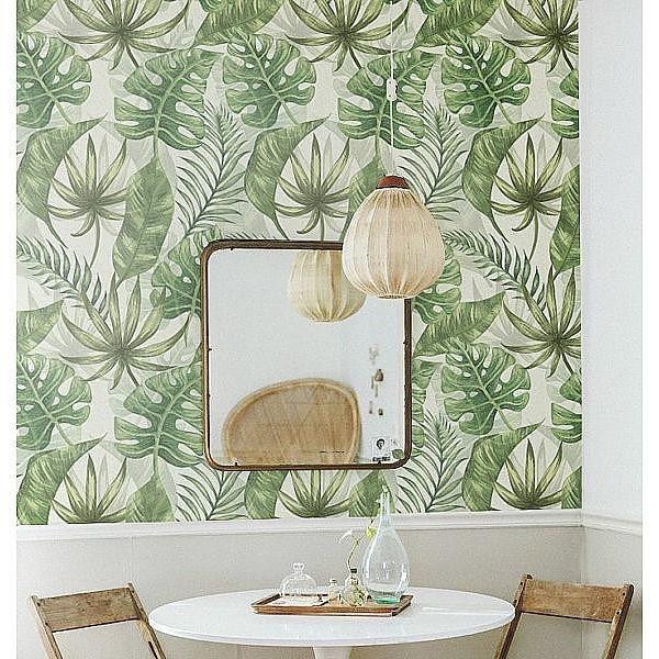 Pitimana, palm leaves wallpaper