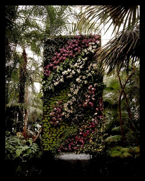 Patrick Blanc  Vertical Gardens