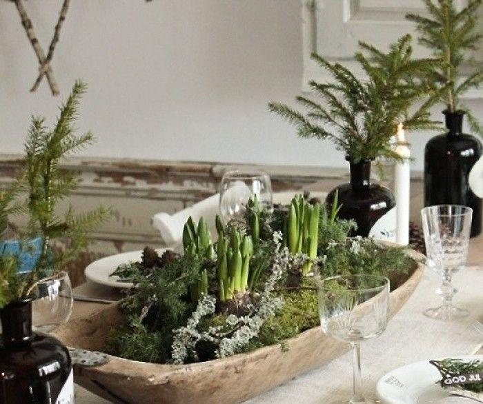 forced-bulbs-scandinavian-tabletop-christmas-gardenista