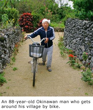 GOOD   Diet secrets of Okinawans - Fruit and Veg, Soy, Sweet potato, Limited Meat, Fish, Seaweed,Turmeric, Green Tea, calorie restriction 1200 per day