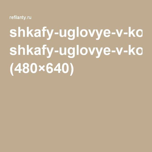 shkafy-uglovye-v-komnatu-2.jpg (480×640)