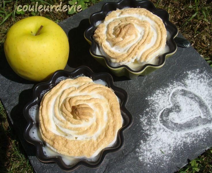 Je vous propose aujourd'hui une recette très simple et pourtant bien savoureuse avec le fruit de saison qu'est la pomme. Cedessertest réalisé entièrement au thermomix, mais vous pouvez très bien ...
