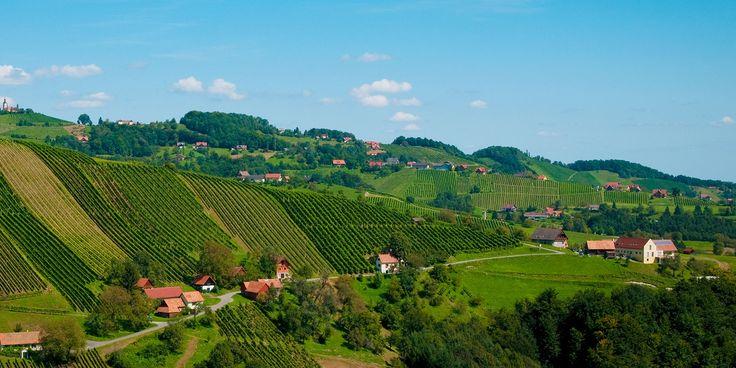 Steirische Winzer sind für ihren Sauvignon blanc berühmt, haben aber noch andere Pfeile im Köcher. Und sie demonstrieren, was Lagerfähigkeit bedeuten kann.