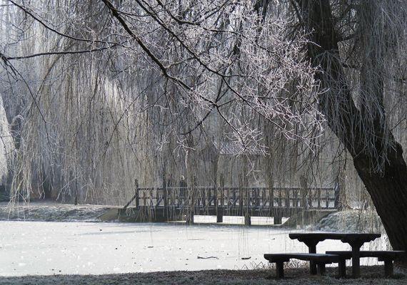A legszebb magyar tájak hóval borítva   femina.hu