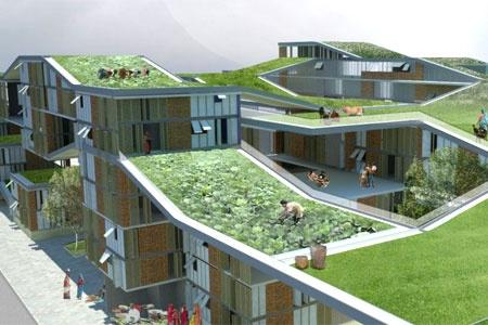Çatı üstünde sebze bahçesi