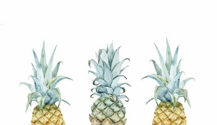 Three Pineapples Drawing Cute Wallpapers For Lock Screen On White Background In 2020 Computer Wallpaper Desktop Wallpapers Desktop Wallpaper Summer Pineapple Wallpaper
