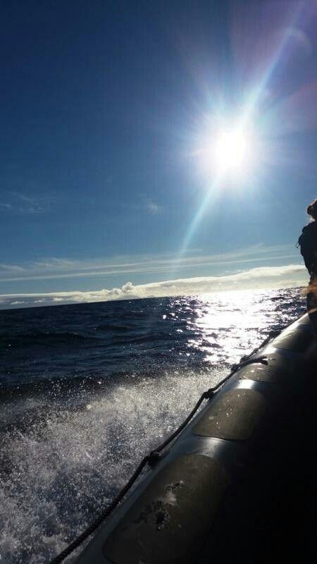 MSC Fantasia - Alla ricerca di mammiferi marini - Madera  Dopo aver indossato il giubbotto di salvataggio, siamo partiti volando sull'oceano a bordo di un veloce gommone alla ricerca dei mammiferi marini che popolano l'oceano nei pressi della costa meridionale di Madera.  Un'esperienza fortissima ricca di emozioni!  Visitabile  anche su www.mondoscatto.net sezione Africa -  Madera.  #MSCFantasia #Delfini #Madera