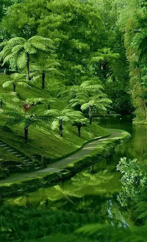 Parc în Guangdong, China.