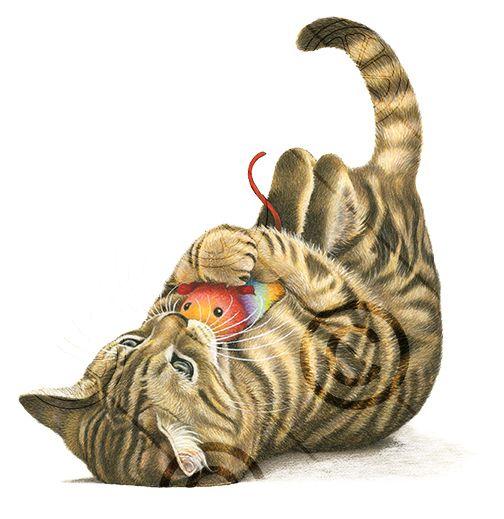 20 Beste Idee 235 N Over Katten Tekening Op Pinterest