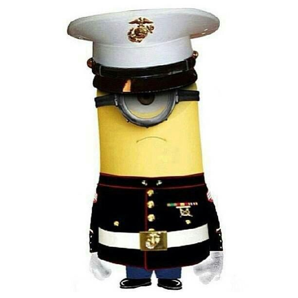 Minions are already cute enough.. But put dress blues on one and I'm freaking in love! #iwantone